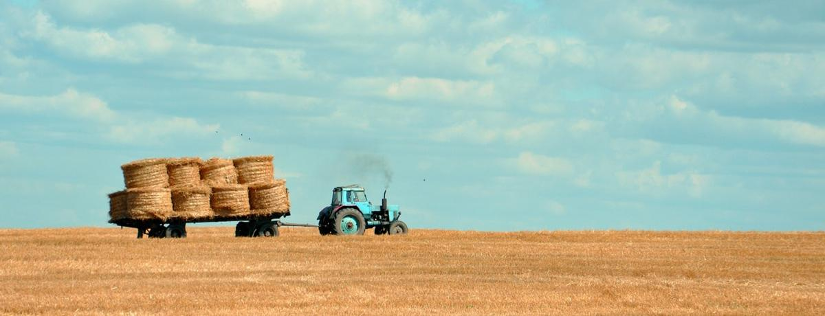 What tires and tractors can teach us about content marketing